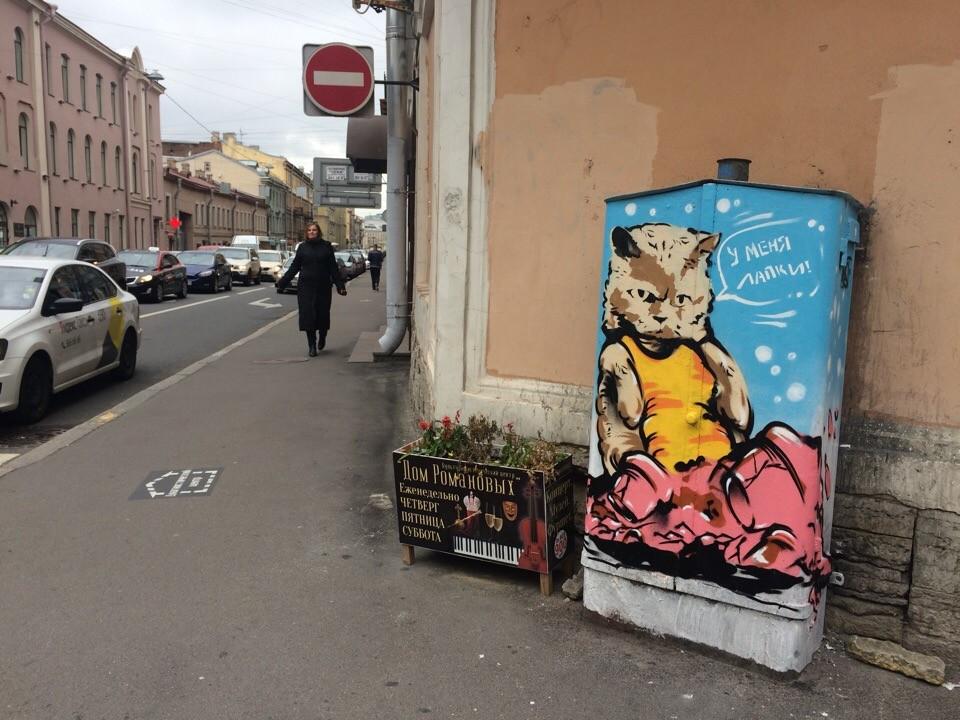 кот на Гончарной