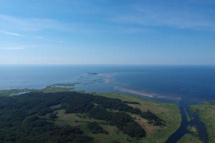 Кургальский заказник полуостров Балтийское море природа