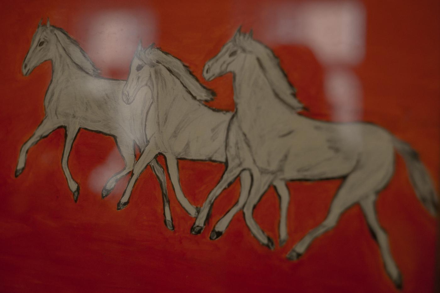 кони, лошадь