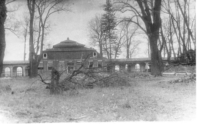 Дворец Монплезир_1944
