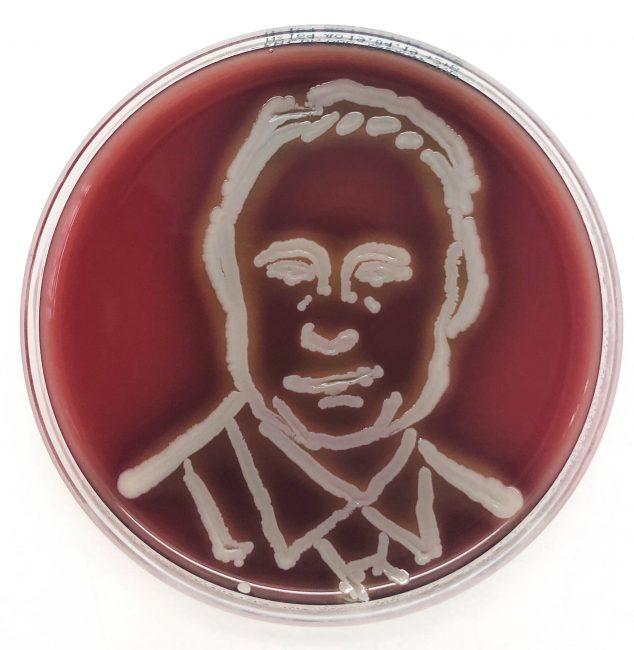микроб, путин