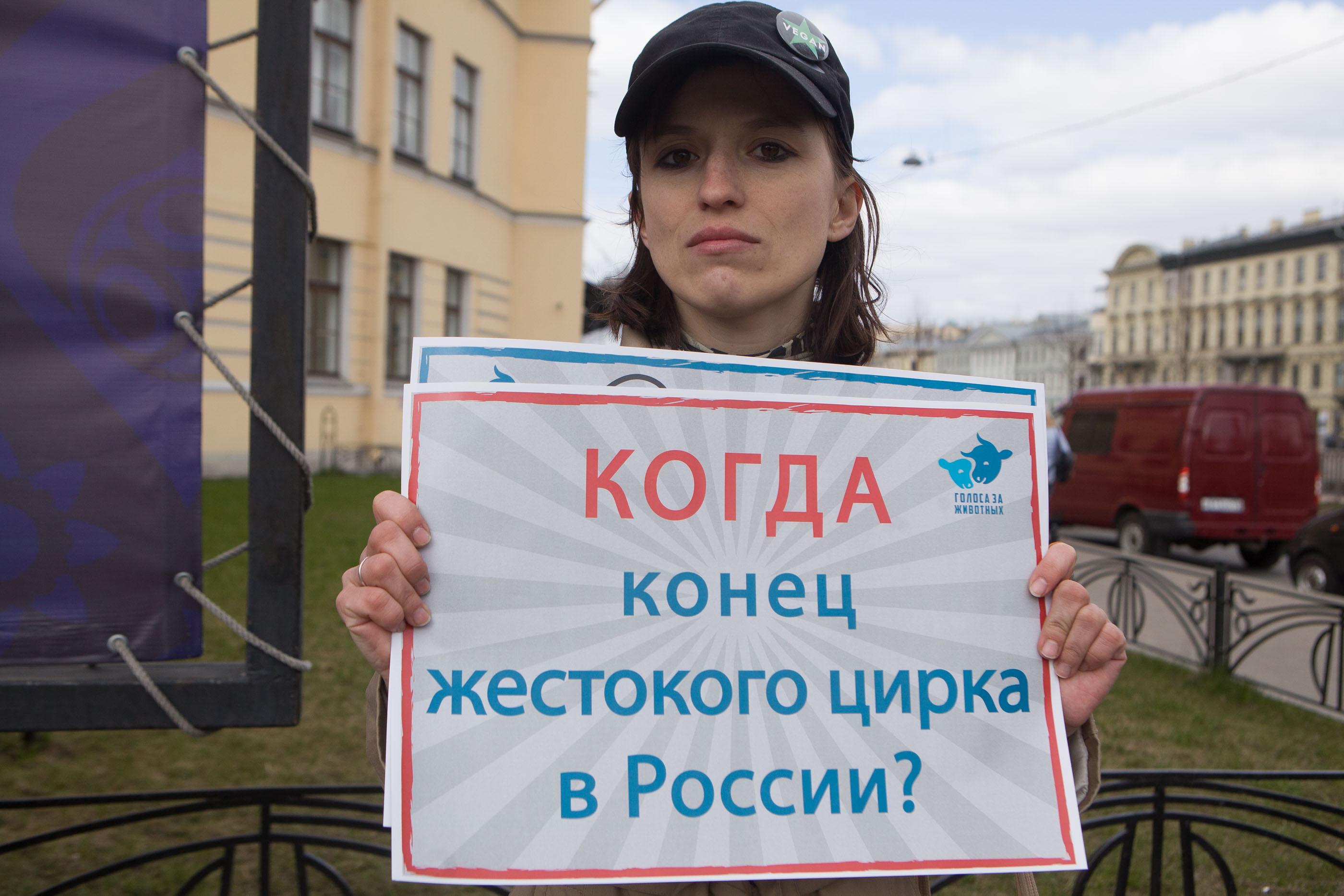 Любовь Кладова, цирк на фонтанке, пикет, зоозащитники