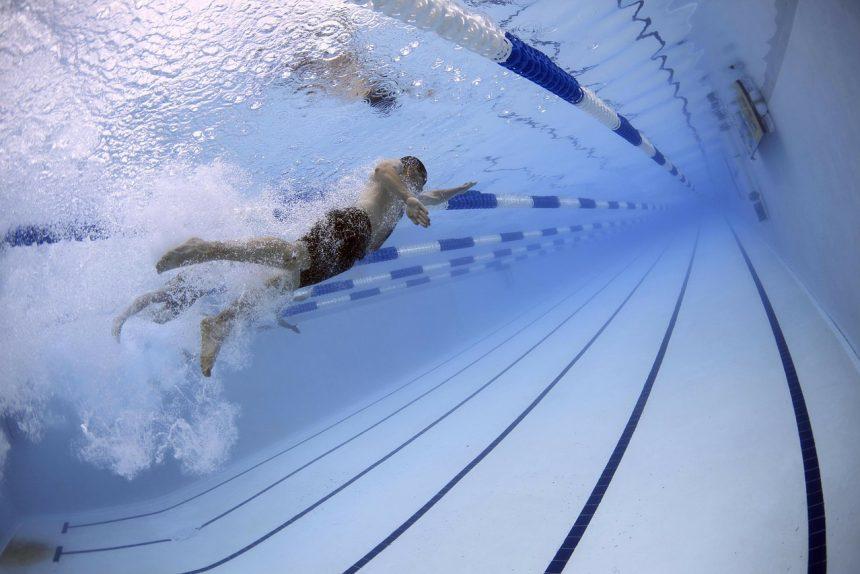пловец, бассейн, вода, плаванье