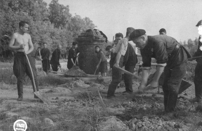 Воскресник в Верхнем саду 13.08.1944