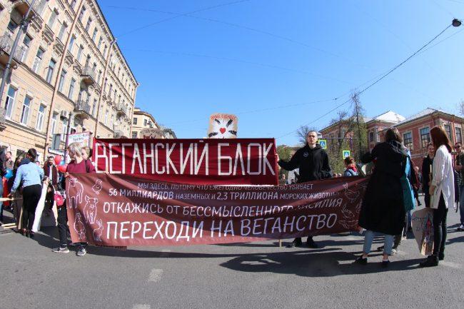 Первомай в Петербурге: онлайн