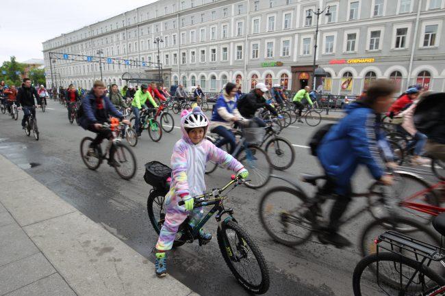 велопарад велопипеды