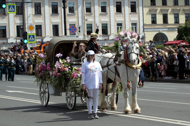 фестиваль цветов конный экипаж упряжка карета