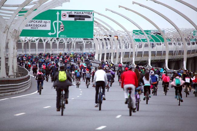 фестиваль ЗСД велосипедисты велопробег велоспорт