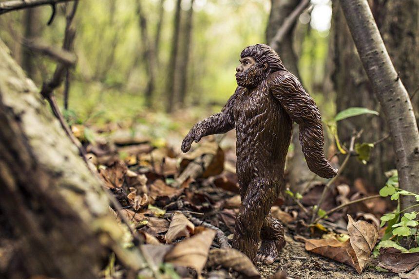 снежный человек йети неандерталец