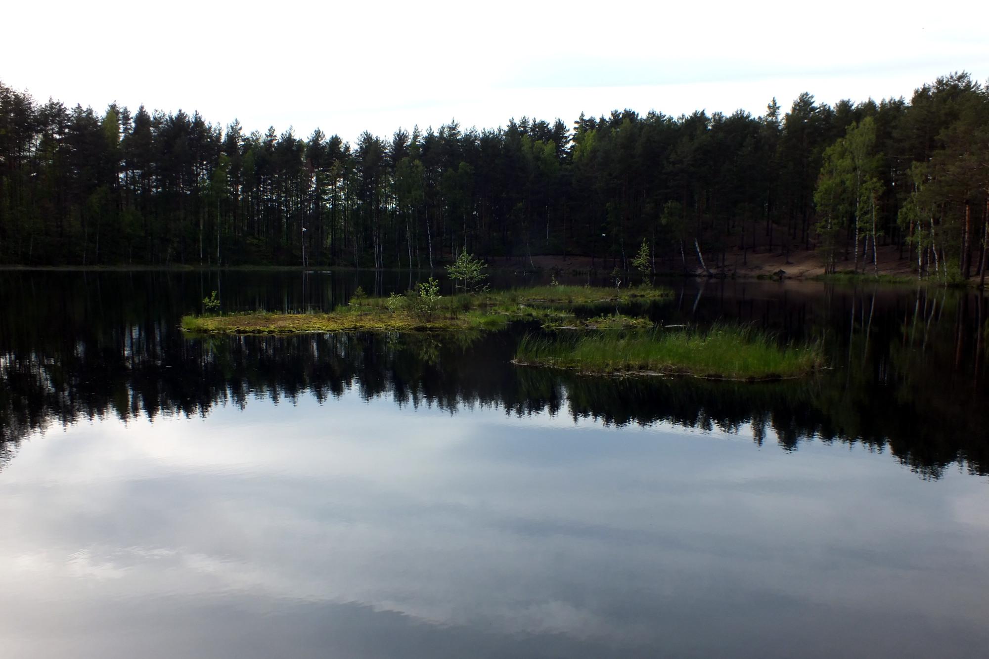 семиозерье озеро Алёнушка природа вода Карельский перешеек