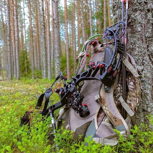 лук, стрелы, охота