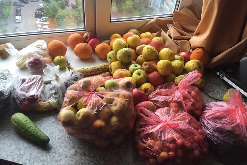 еда, фудшеринг, овощи, фрукты, просрочка