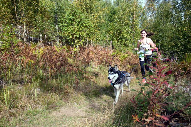 трейл забег по пересечённой местности Rautu Trail бег лёгкая атлетика собаки