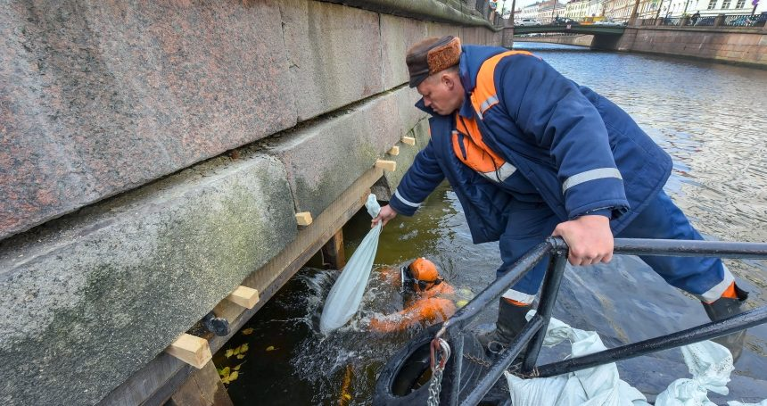 водолаз набережная канала грибоедова