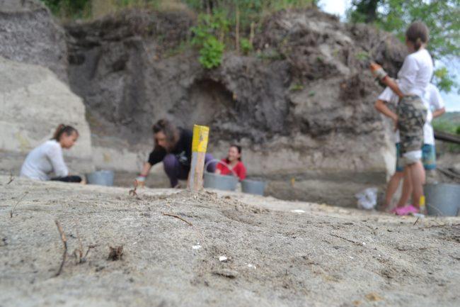 остров Поречный, экспедиция, раскопки, археология