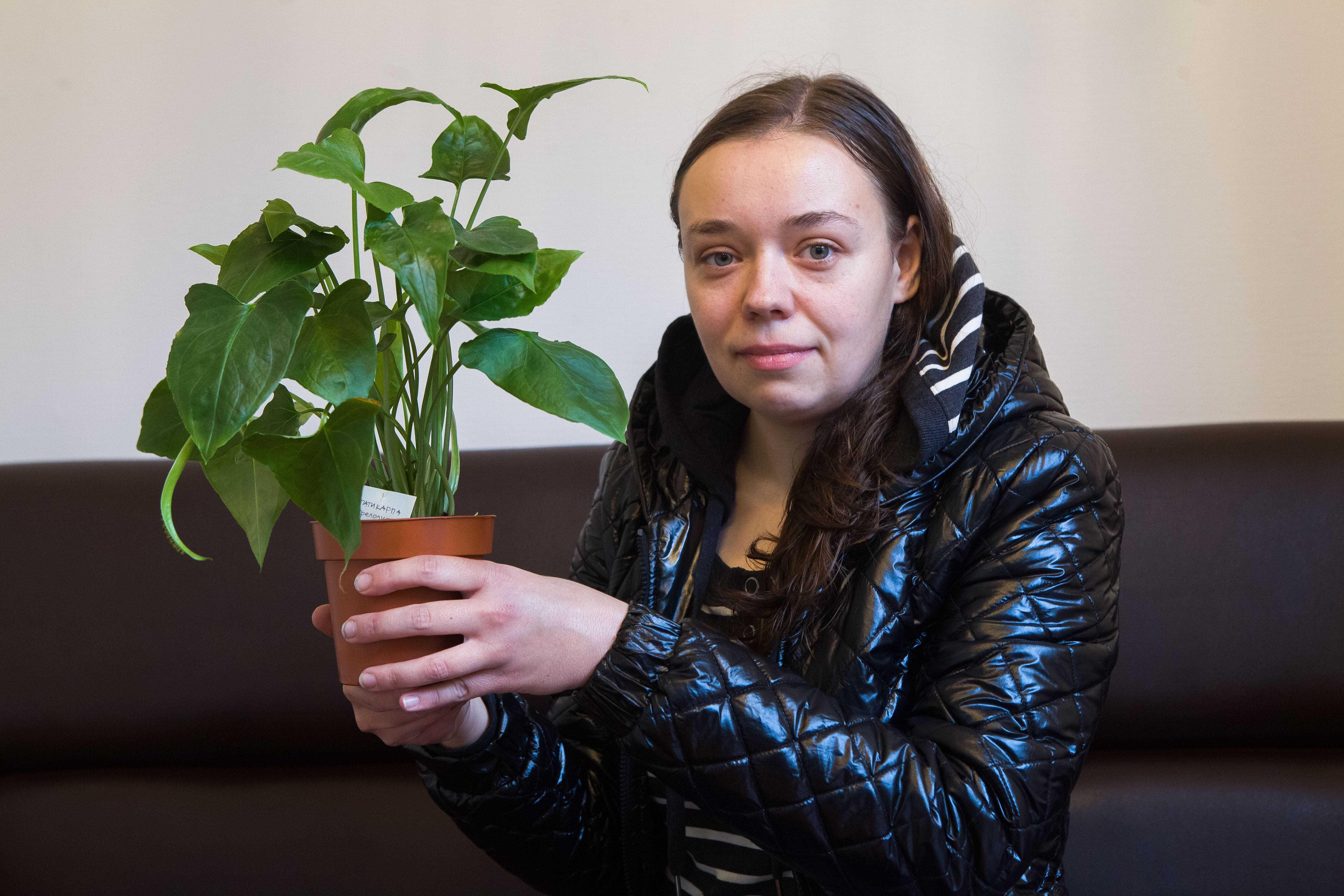 растение, цветок, растениевод