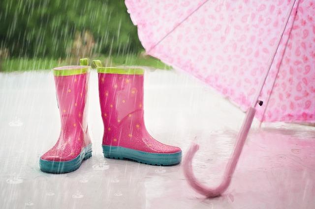 дождь зонт сапоги дети лужа