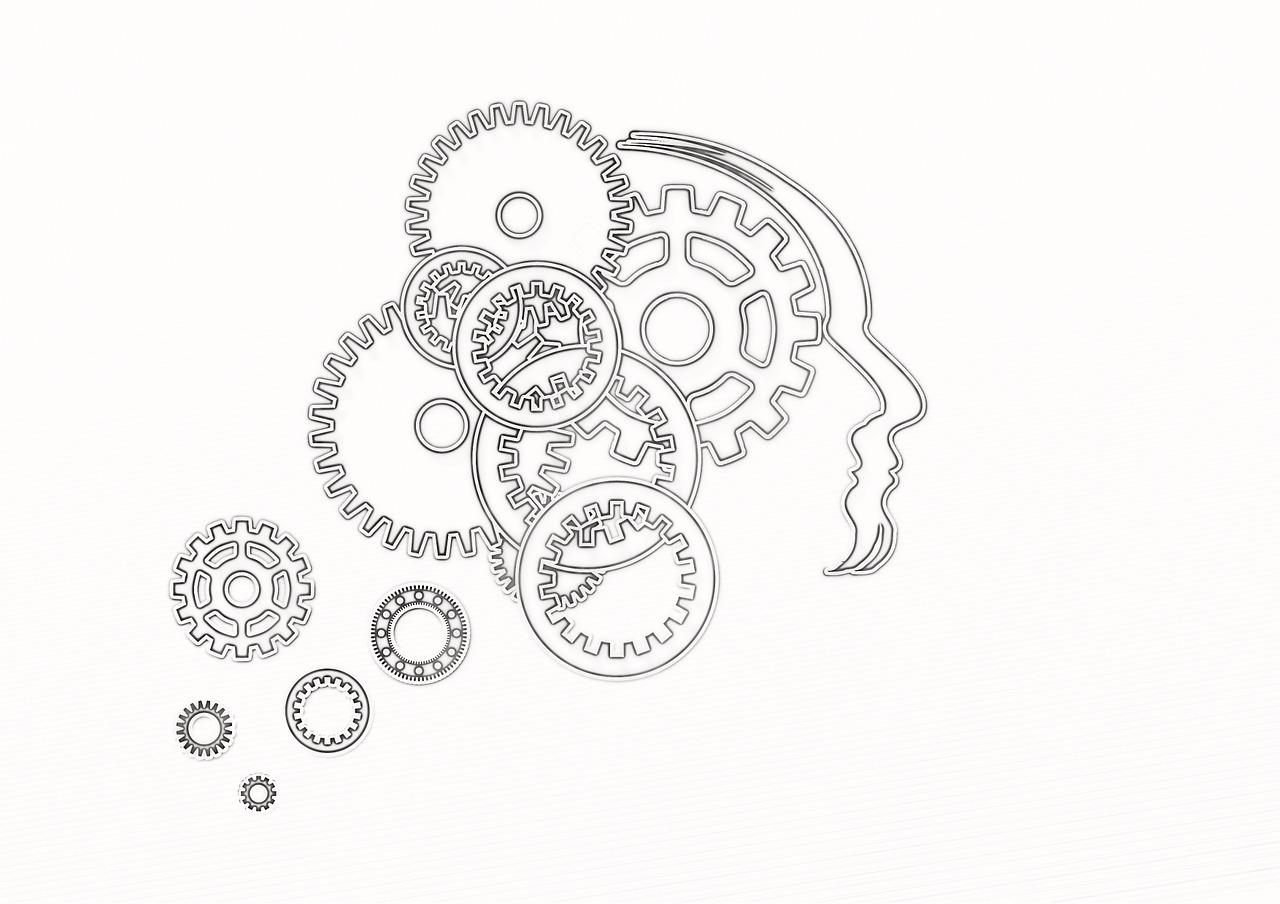 голова, разум, мозг, мышление