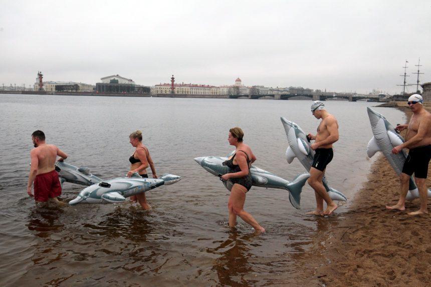 «Создай дельфина и плыви с ним»: «Невские моржи» устроили массовый заплыв