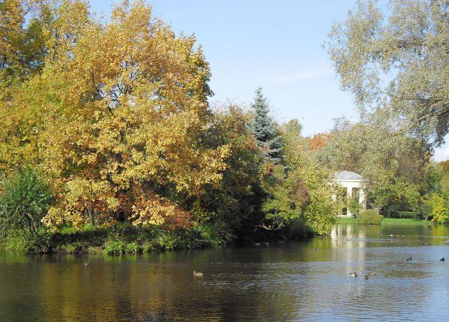 Парк Екатерингоф пруд