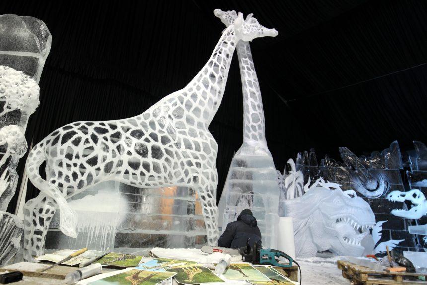 ледяные скульптуры жирафы