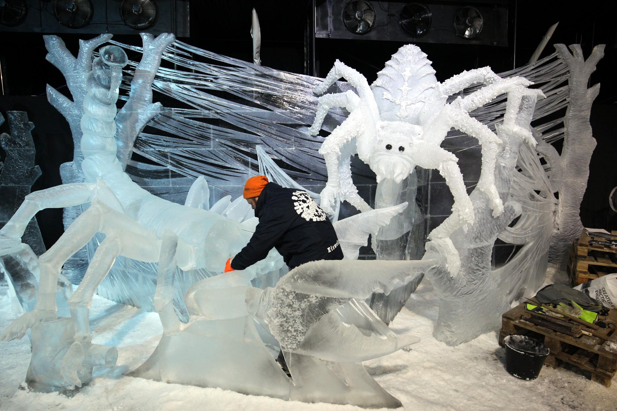 ледяные скульптуры скорпионы пауки членистоногие