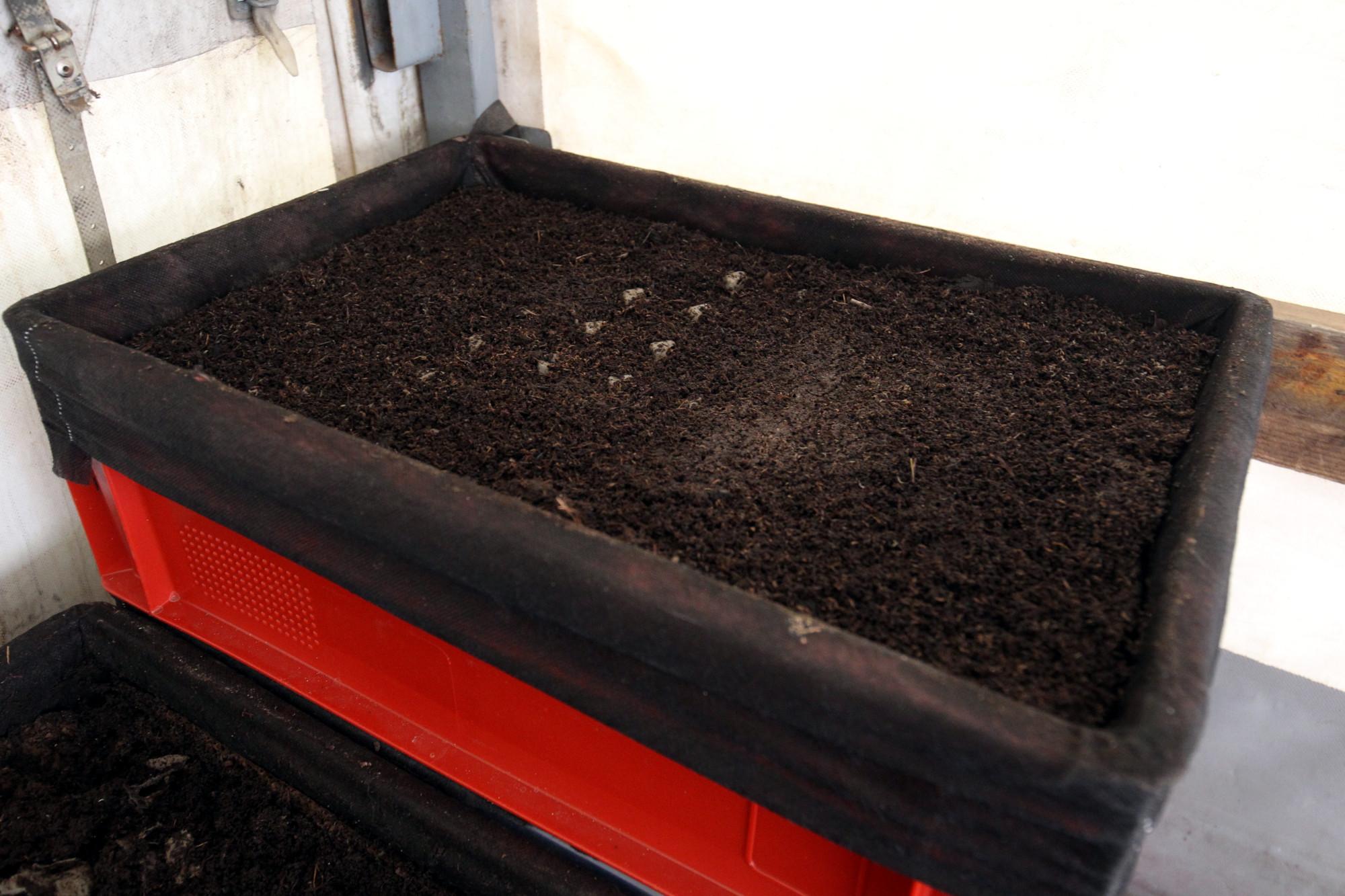 приём органических отходов вторсырьё компостирование