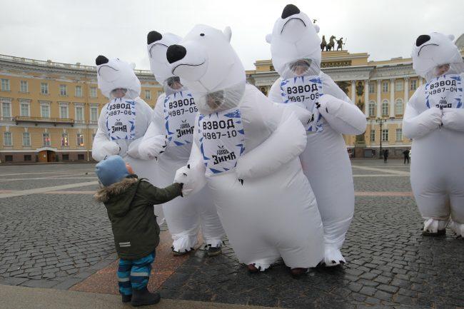 медвежий десант белые медведи