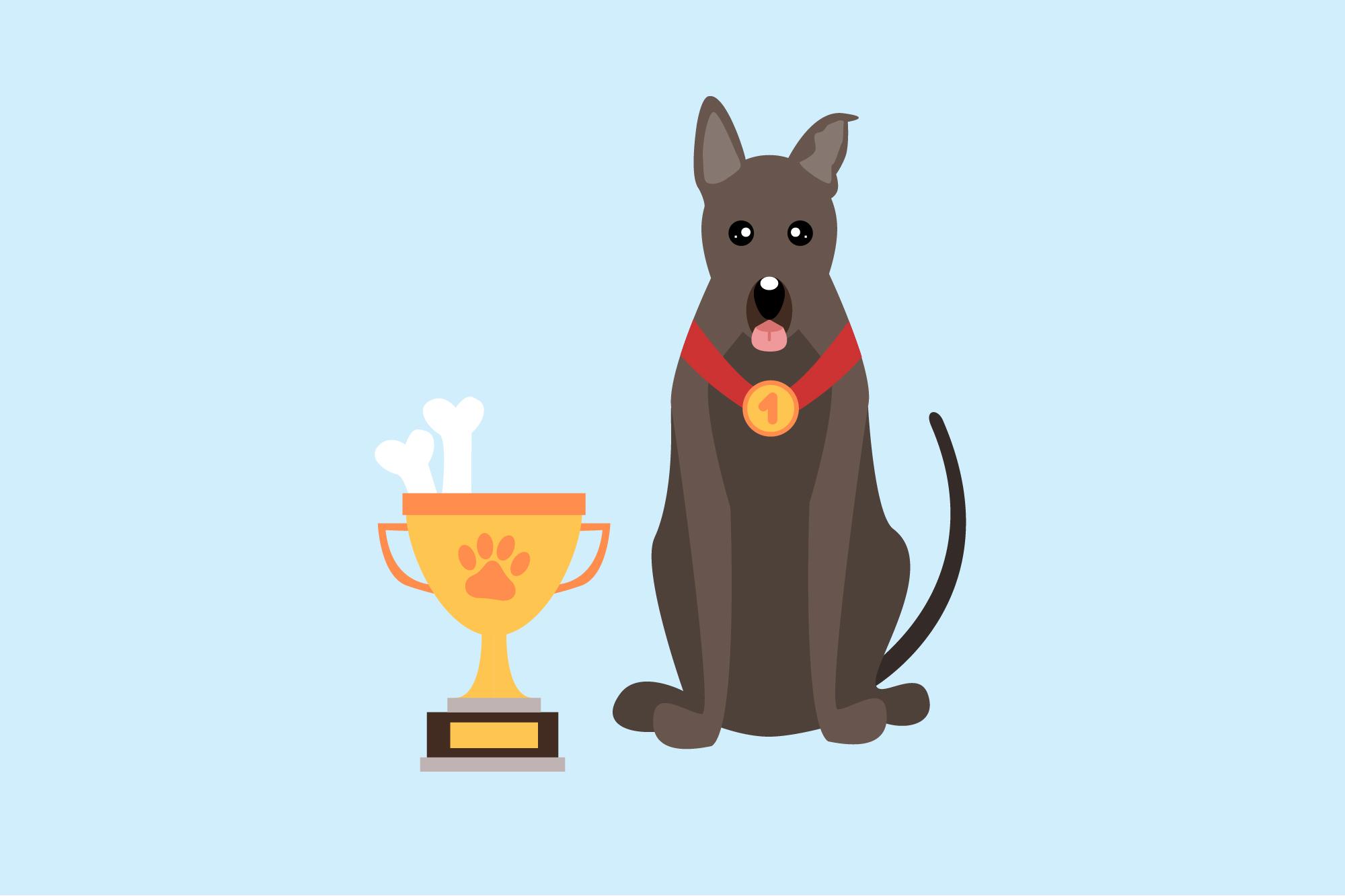 собака победитель пёс