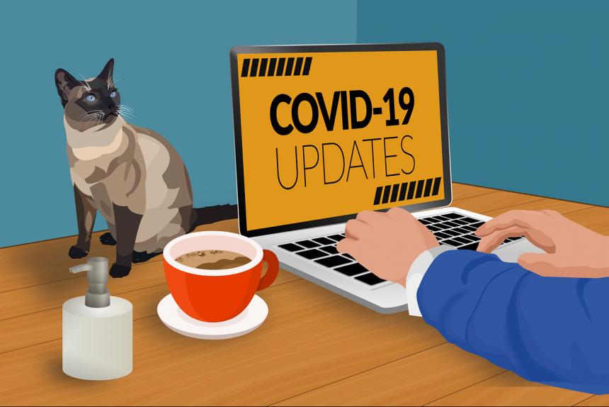 изоляция коронавирус covid-19 работа из дома