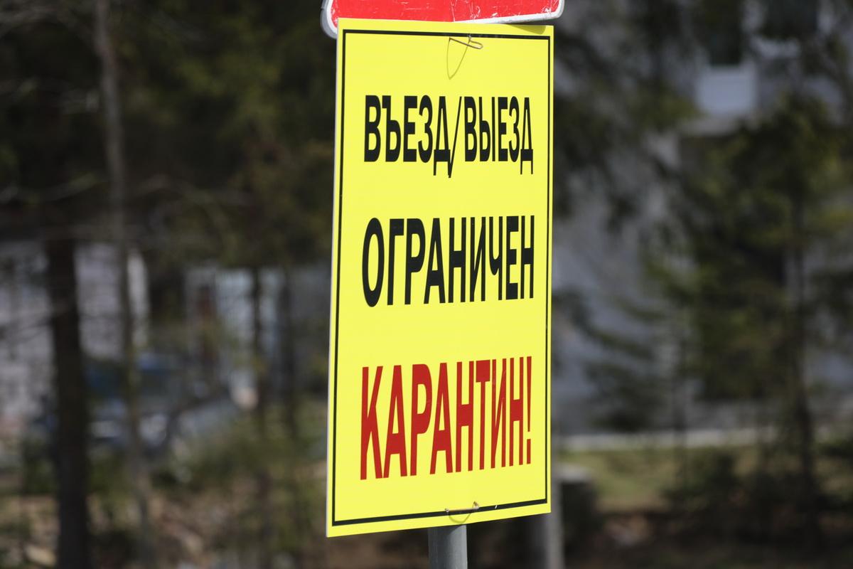 коронавирус, карантин, посёлок Первомайское, Ленинградская область
