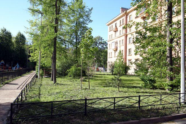 придомовой сад, улица Маринеско 6