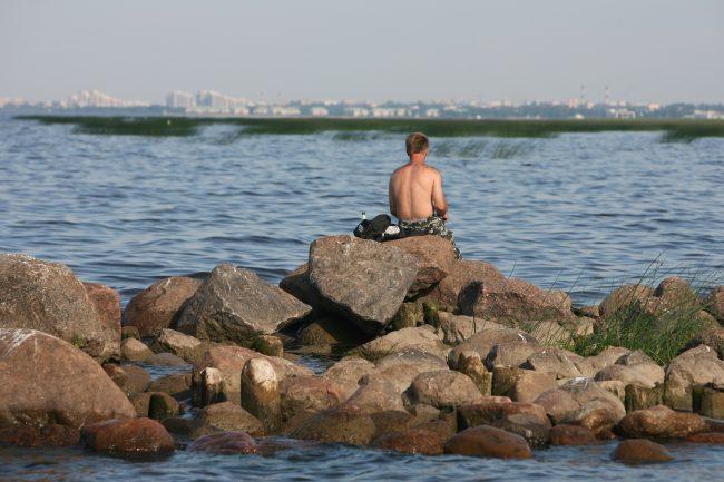 Южный берег Финского залива, море, загорающий человек, отдых