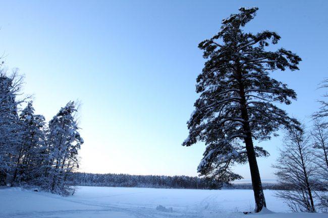 ООПТ, особо охраняемая природная территория, памятник природы, Щучье озеро, зима, снег