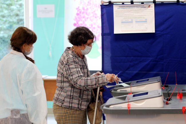 голосование, избирательный участок 171, поправки в конституцию