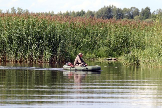 Юнтоловский заказник, ООПТ, особо охраняемая природная территория, Лахтинский разлив, рыбак