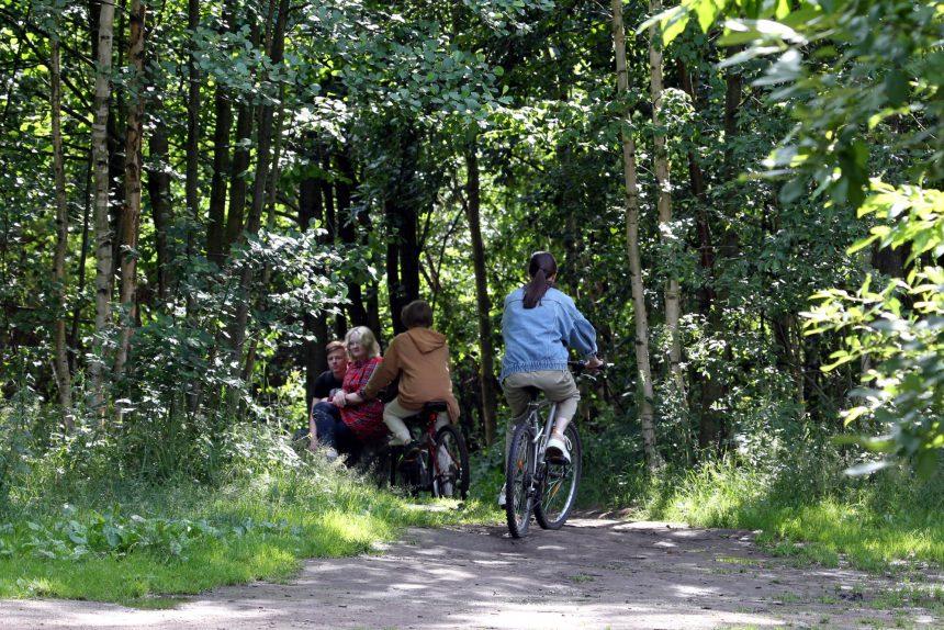 Юнтоловский заказник, ООПТ, особо охраняемая природная территория, велосипедисты