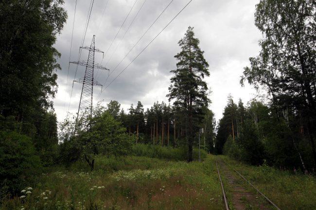 Новоорловский заказник, лесопарк, ООПТ, особо охраняемая природная территория, памятник природы, ЛЭП, линия электропередач, железная дорога