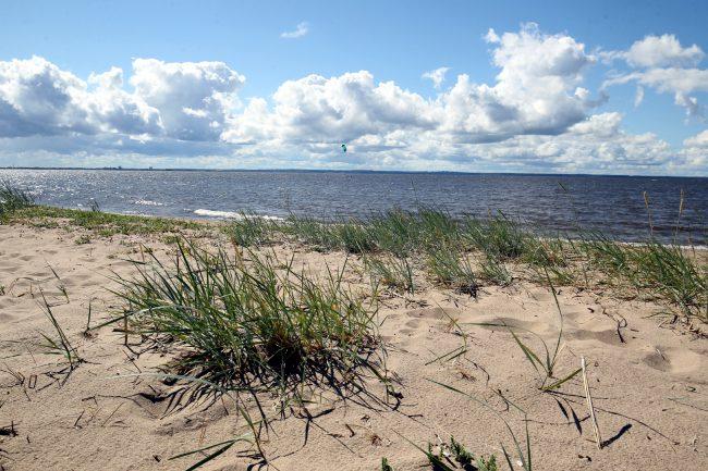 пляж, море, Финский залив, Кронштадт, заказник Западный Котлин