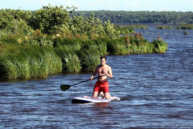 ООПТ, Заказник Сестрорецкое болото, озеро, Сестрорецкий разлив, SUP-серфинг, SUP-серфер