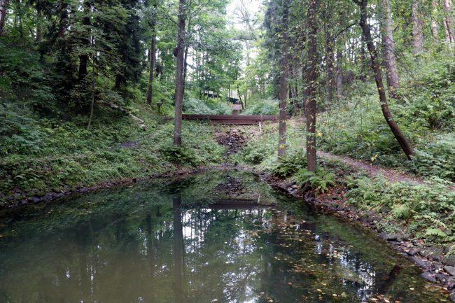ООПТ, особо охраняемая природная территория, памятник природы, Комаровский берег, пруд