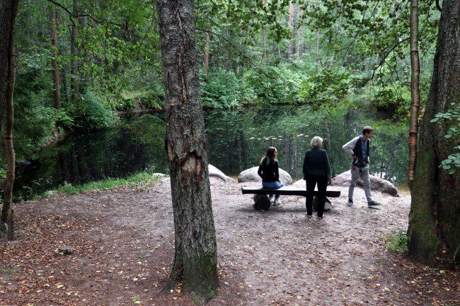 ООПТ, особо охраняемая природная территория, памятник природы, Комаровский берег, экотропа