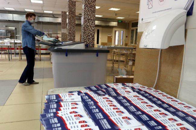 голосование, избирательный участок 173, поправки в конституцию