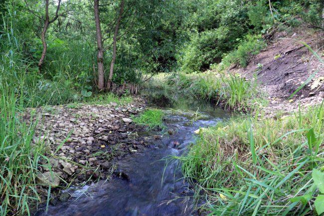 памятник природы, долина реки Поповка, ООПТ, особо охраняемая природная территория