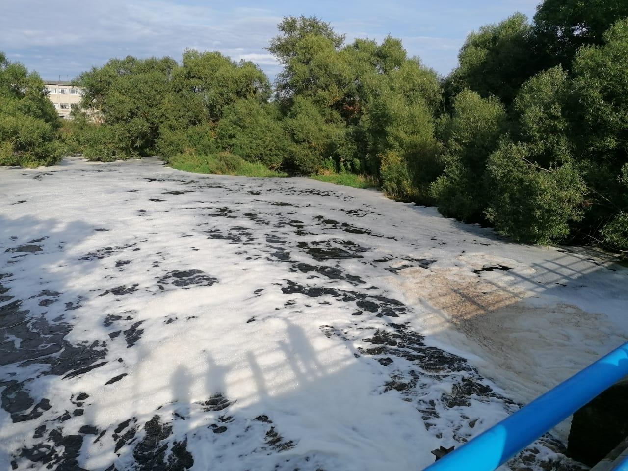 река Ижора, загрязнение, пена