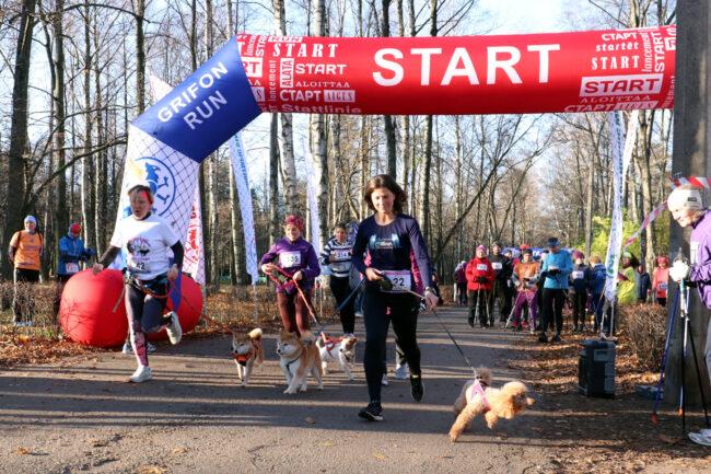 марафон Кубок декабристов, спорт, бег, лёгкая атлетика, Удельный парк, бег с собаками