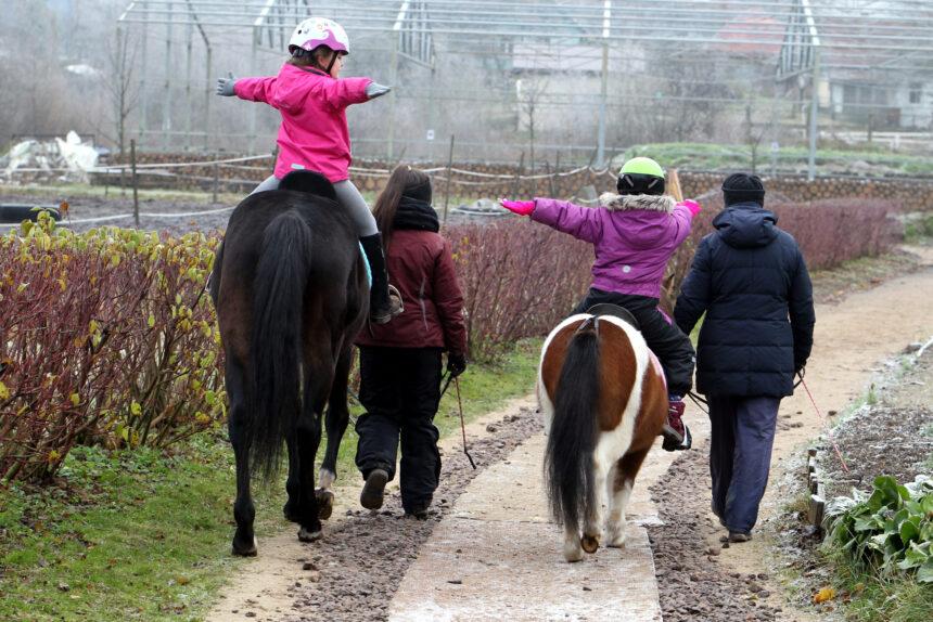иппотерапия, конный клуб Кентаврик, реабилитация, дети, лошади