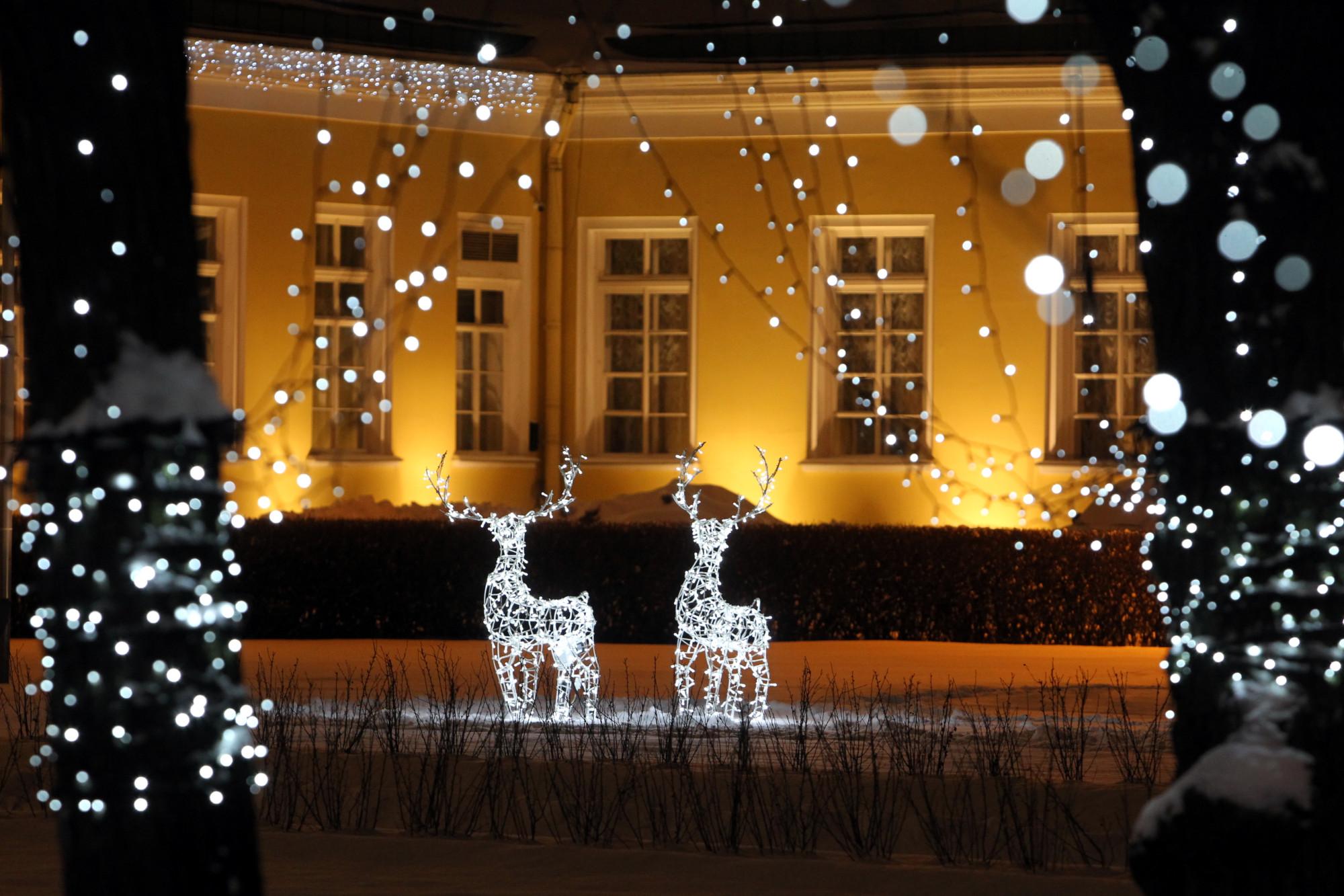 новогодние украшения, иллюминация, олени, Таврический дворец, Новый год