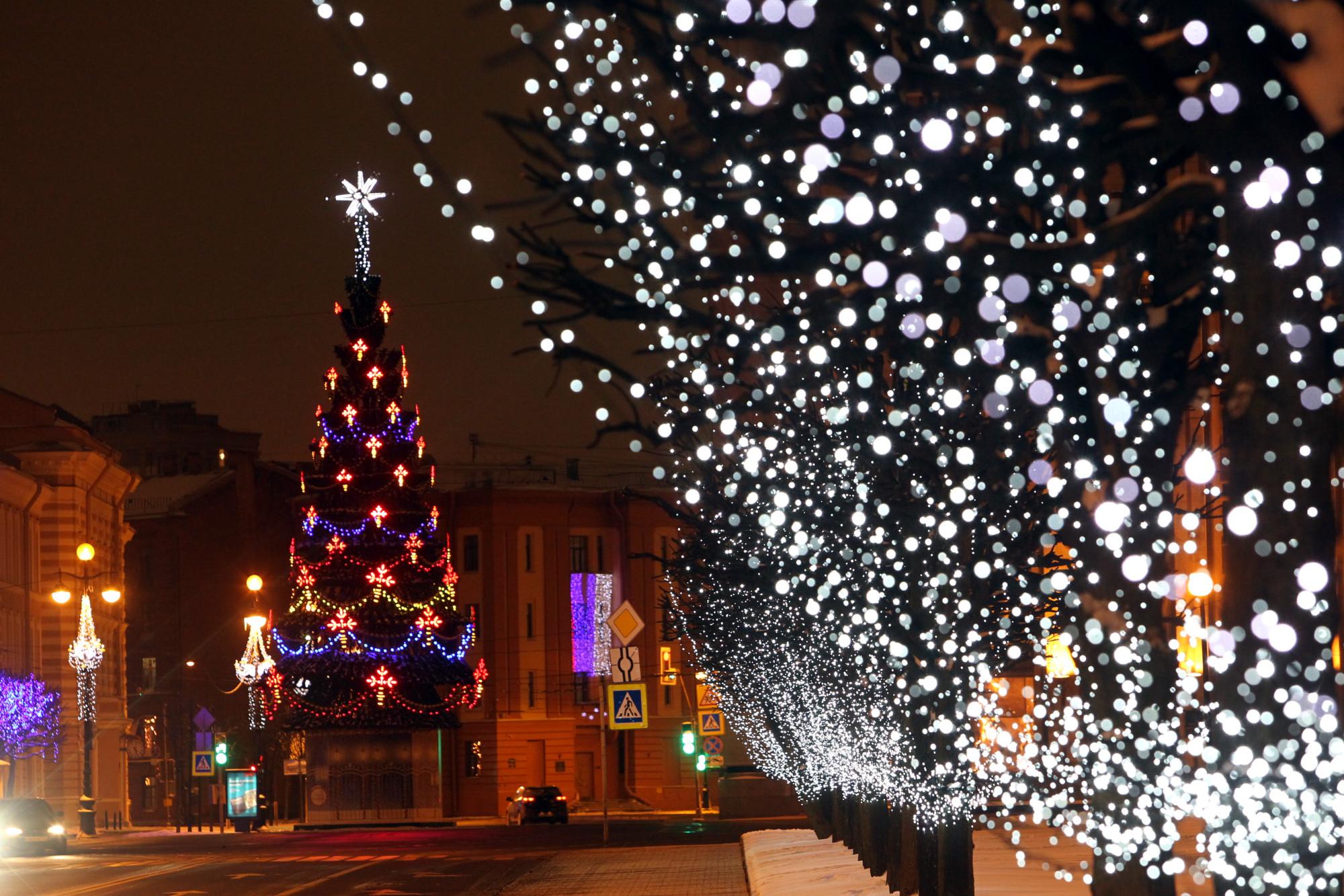 новый год, новогодняя ёлка, ель, площадь Пролетарской диктатуры