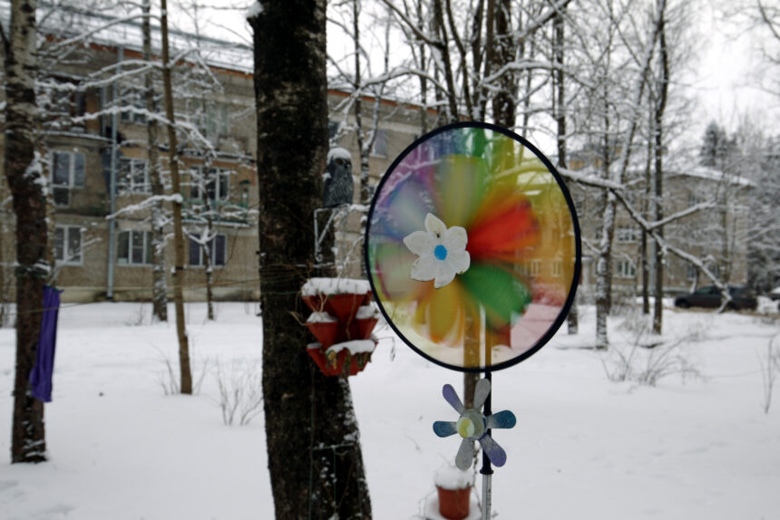 Хвойное бытие: как живёт и с какими проблемами сталкивается анклав Петербурга близ Гатчины
